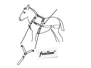 Fölselen Foallow binda upp